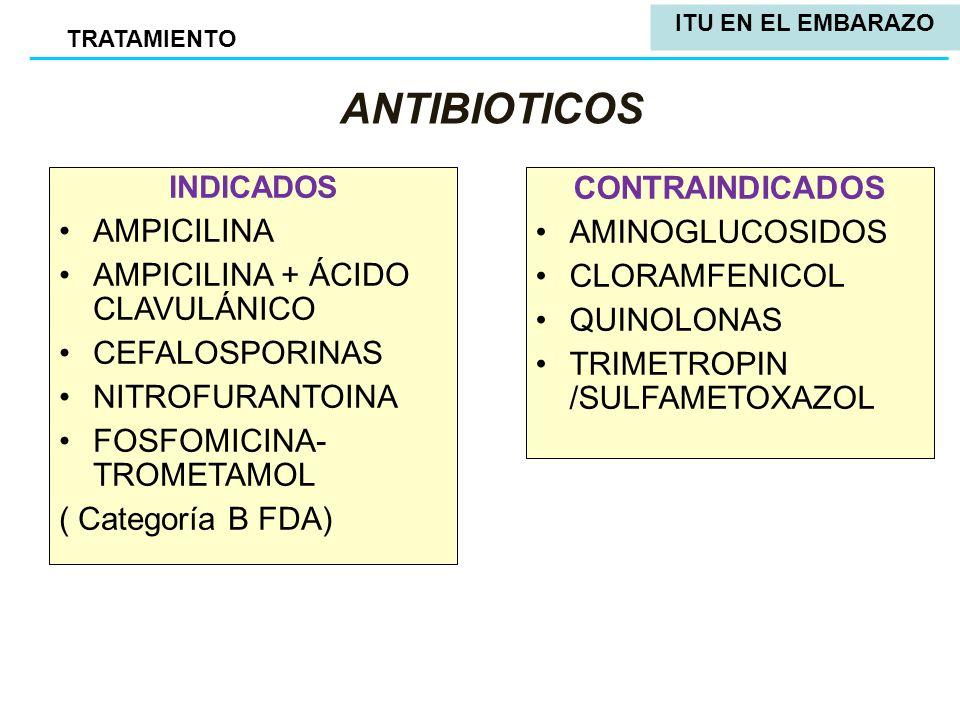 Cefadroxil Antibiotico