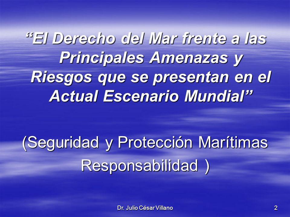 (Seguridad y Protección Marítimas