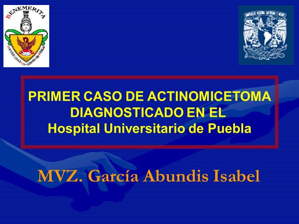 PRIMER CASO DE ACTINOMICETOMA Hospital Universitario de Puebla