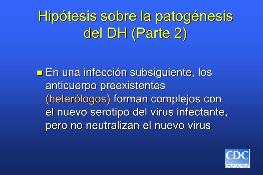 Hipótesis sobre la patogénesis del DH (Parte 2)