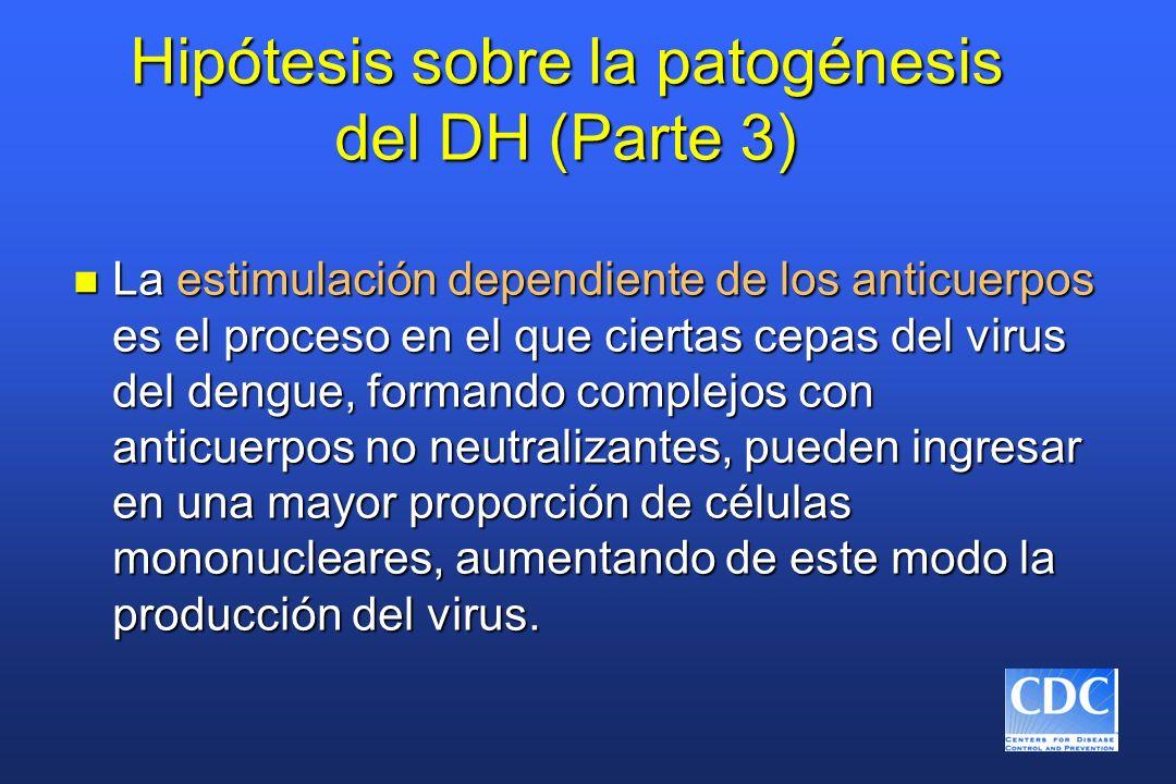 Hipótesis sobre la patogénesis del DH (Parte 3)