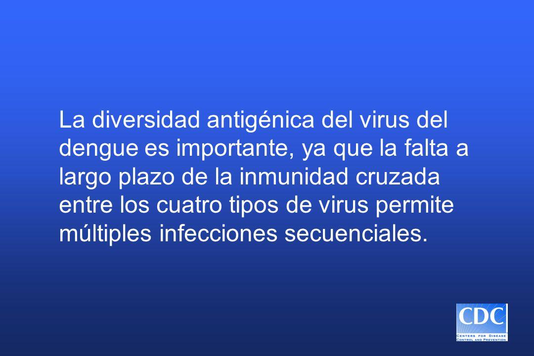 La diversidad antigénica del virus del dengue es importante, ya que la falta a largo plazo de la inmunidad cruzada entre los cuatro tipos de virus permite múltiples infecciones secuenciales.