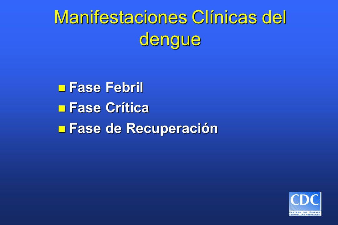 Manifestaciones Clínicas del dengue