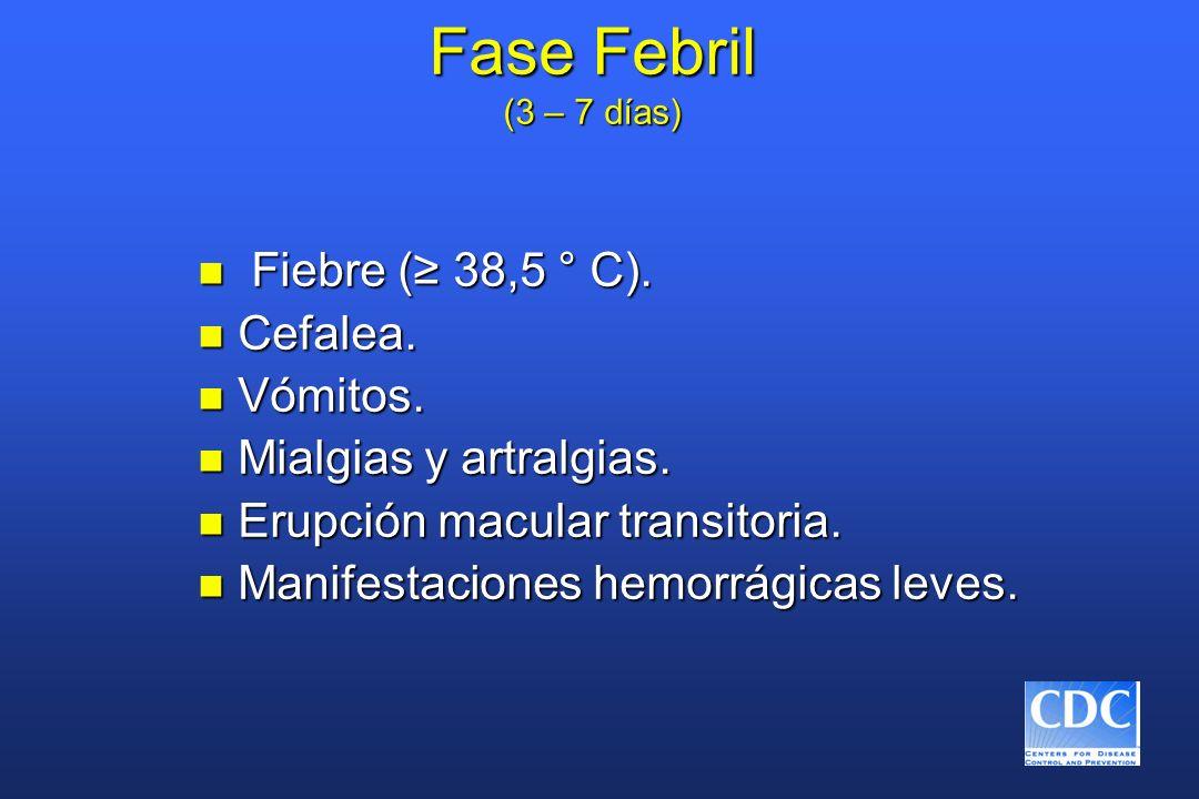 Fase Febril (3 – 7 días) Fiebre (≥ 38,5 ° C). Cefalea. Vómitos.
