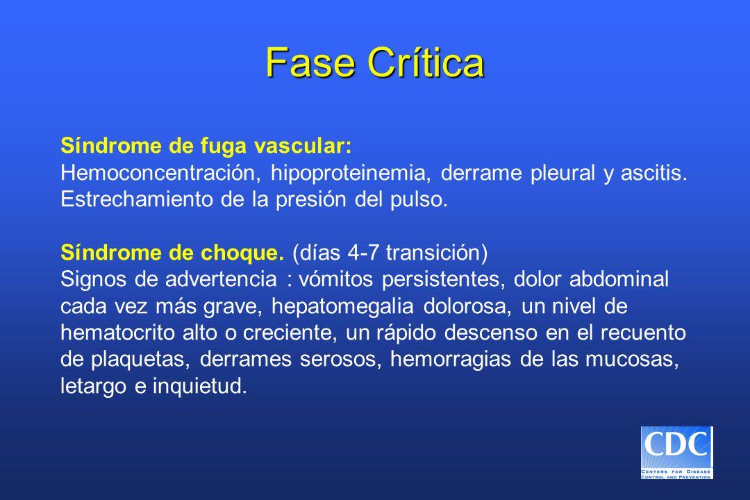 Fase Crítica Síndrome de fuga vascular: