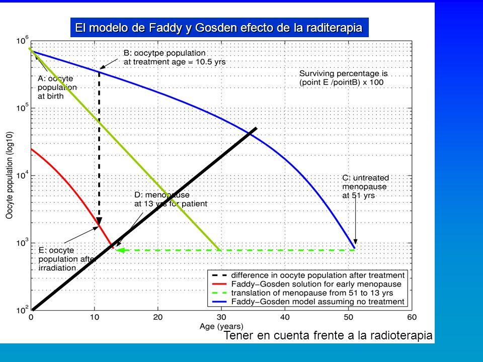 El modelo de Faddy y Gosden efecto de la raditerapia