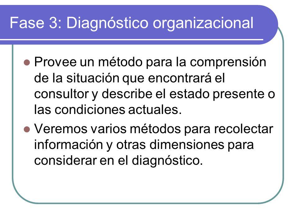 Fase 3: Diagnóstico organizacional