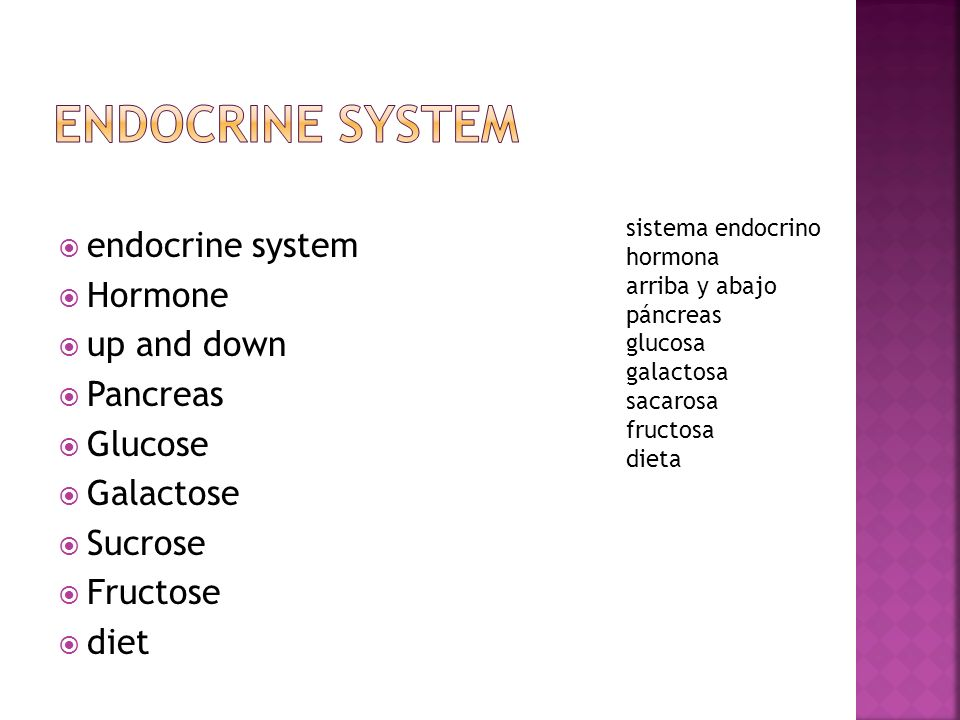 Endocrine System endocrine system Hormone up and down Pancreas Glucose