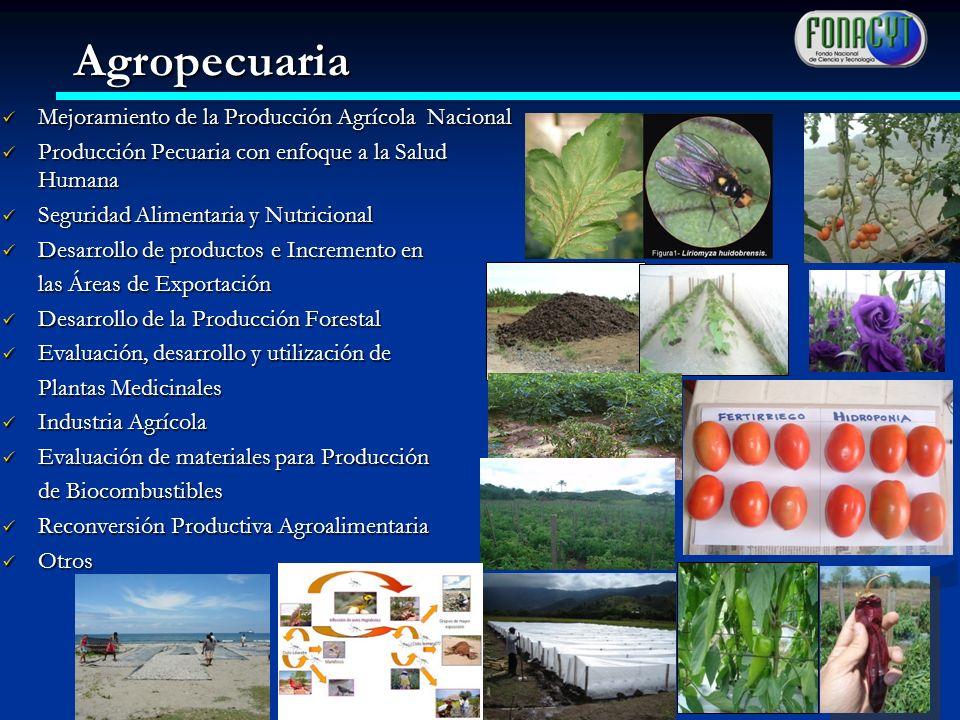 Agropecuaria Mejoramiento de la Producción Agrícola Nacional
