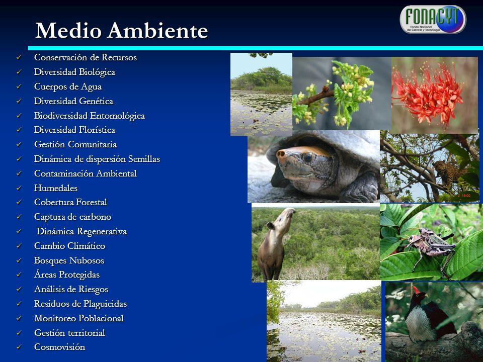 Medio Ambiente Conservación de Recursos Diversidad Biológica