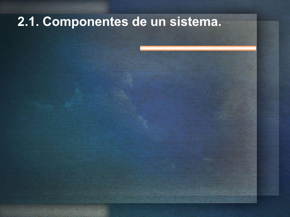 2.1. Componentes de un sistema.