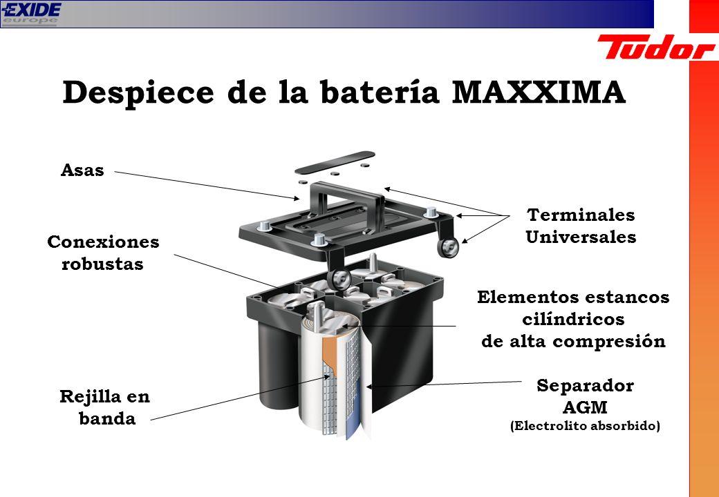 Despiece de la batería MAXXIMA