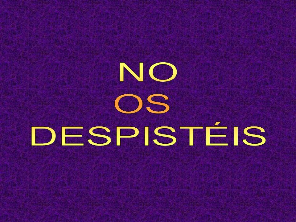NO OS DESPISTÉIS