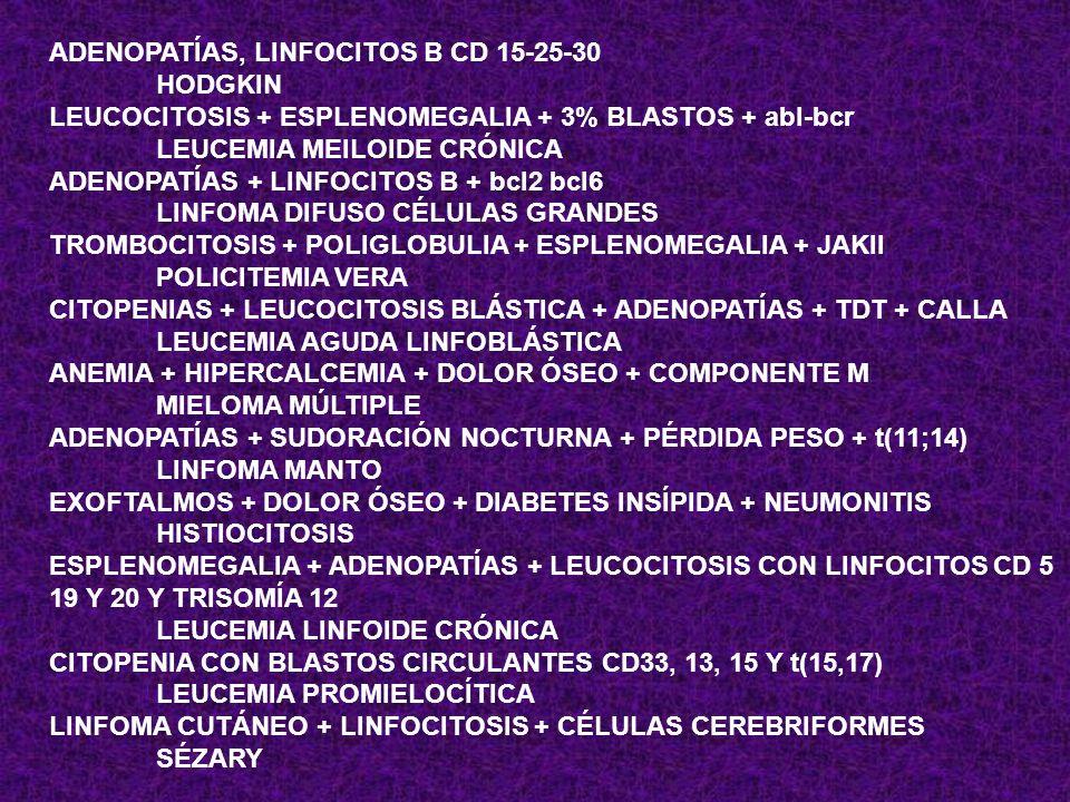 ADENOPATÍAS, LINFOCITOS B CD 15-25-30