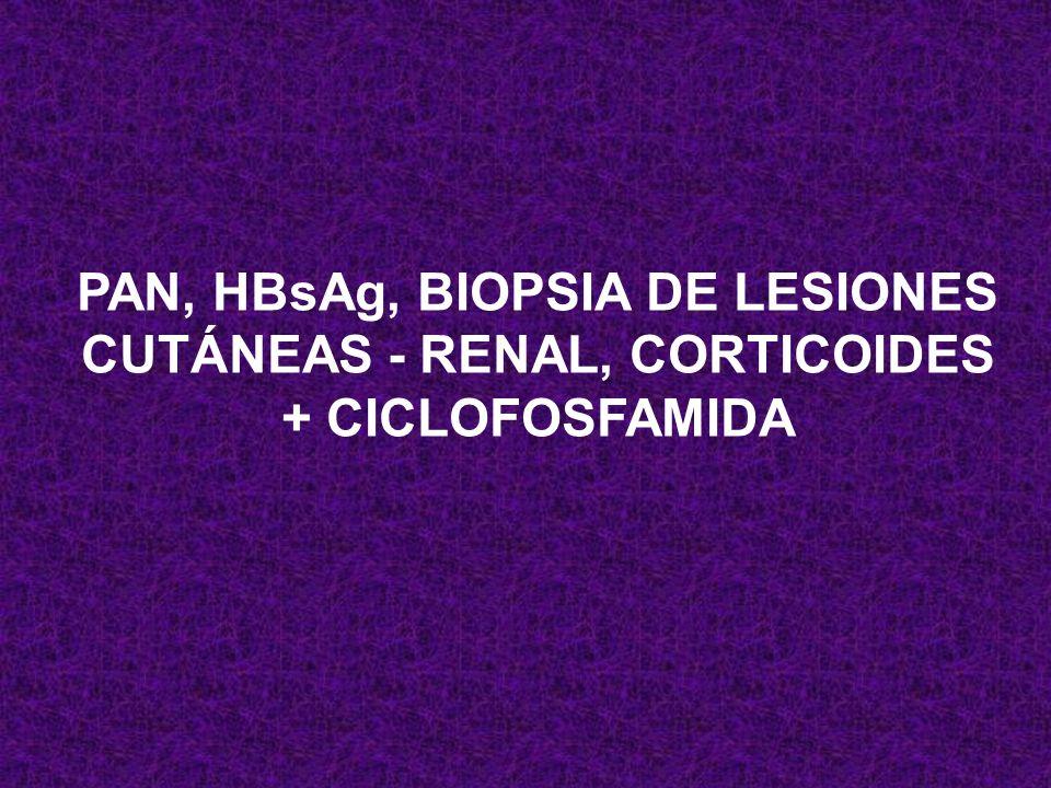 PAN, HBsAg, BIOPSIA DE LESIONES CUTÁNEAS - RENAL, CORTICOIDES + CICLOFOSFAMIDA
