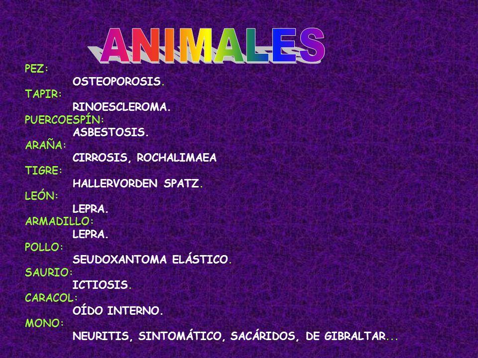 ANIMALES PEZ: OSTEOPOROSIS. TAPIR: RINOESCLEROMA. PUERCOESPÍN: