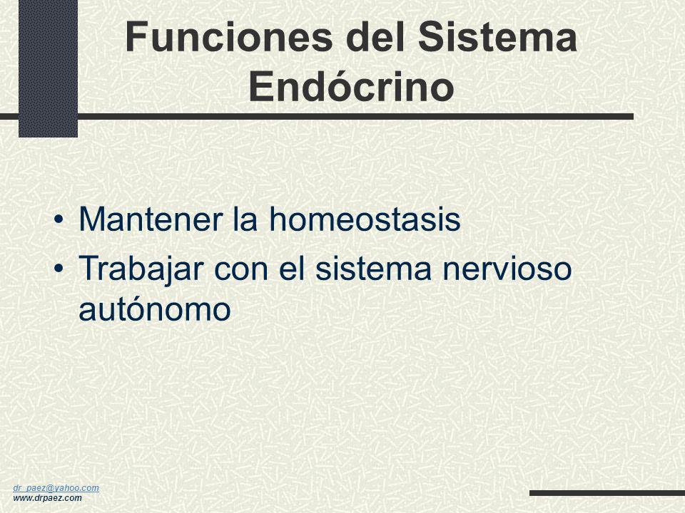 Funciones del Sistema Endócrino