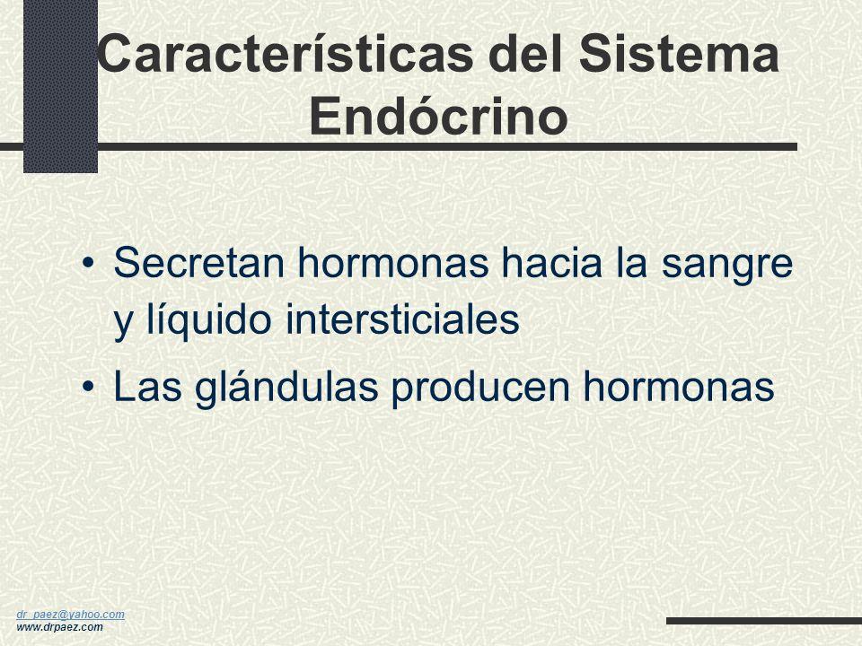 Características del Sistema Endócrino