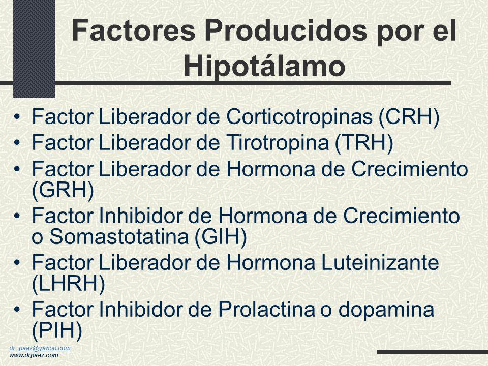 Factores Producidos por el Hipotálamo