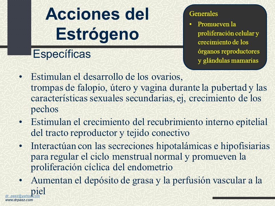 Acciones del Estrógeno