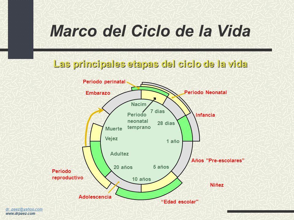 Marco del Ciclo de la Vida
