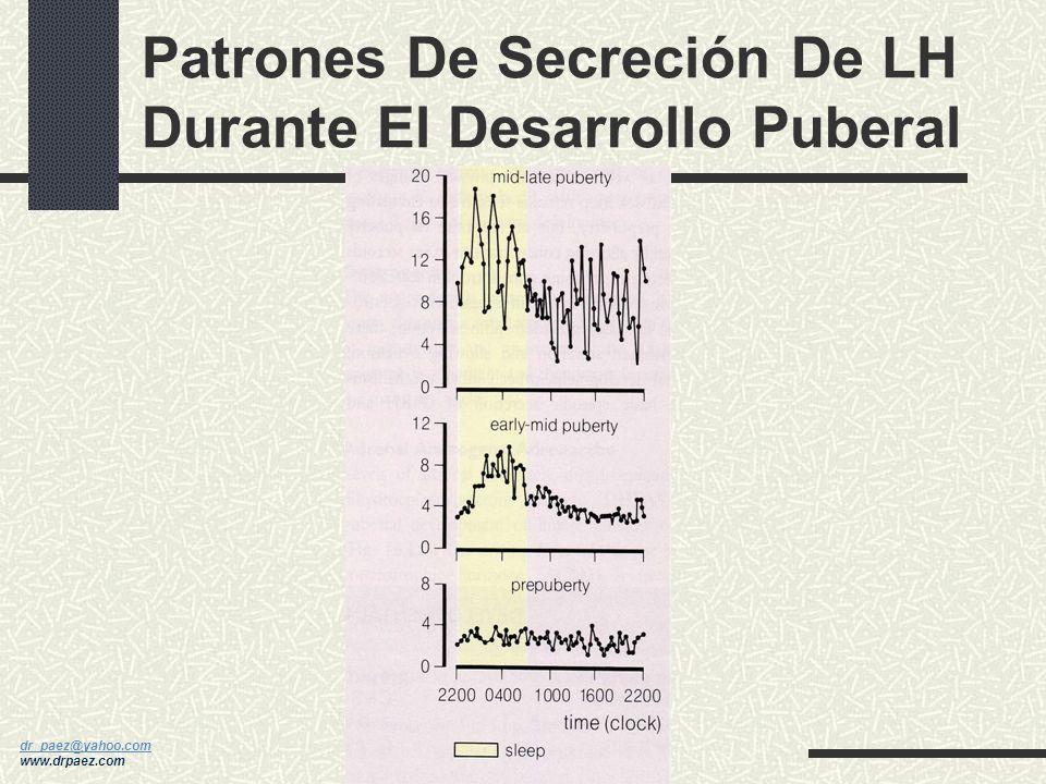 Patrones De Secreción De LH Durante El Desarrollo Puberal