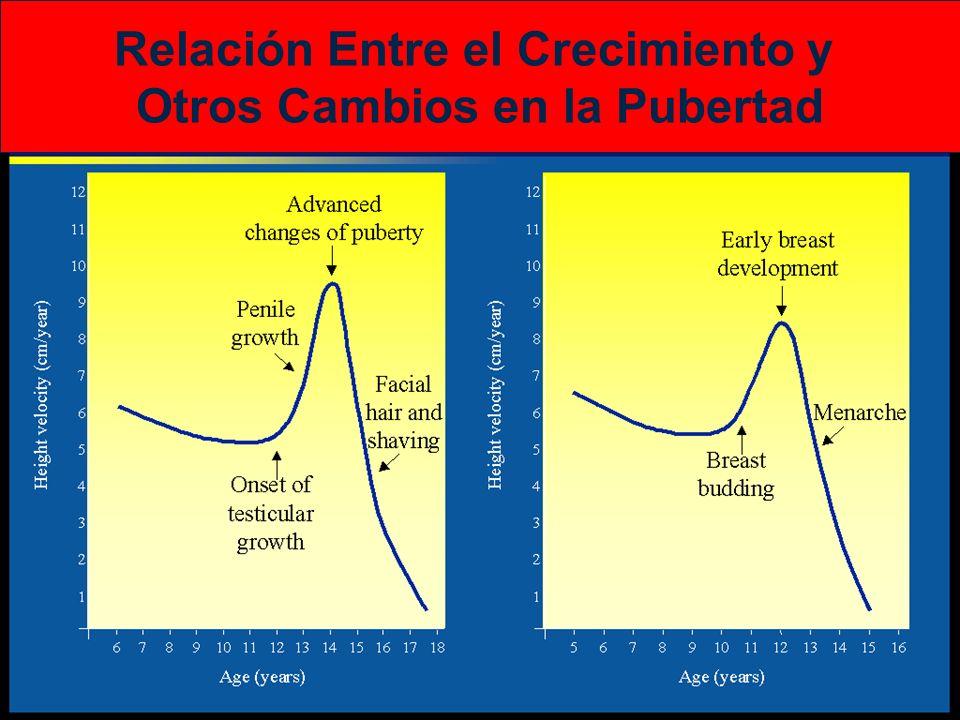 Relación Entre el Crecimiento y Otros Cambios en la Pubertad