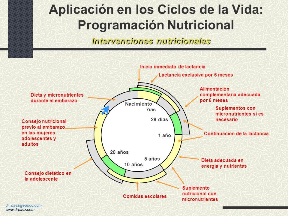 Aplicación en los Ciclos de la Vida: Programación Nutricional