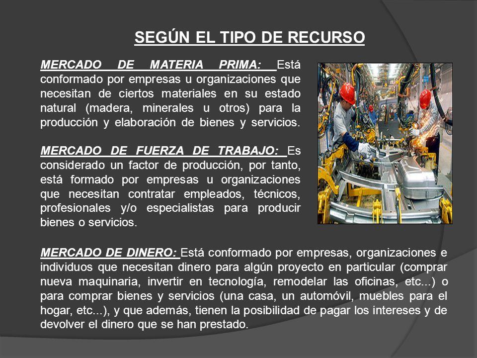 SEGÚN EL TIPO DE RECURSO