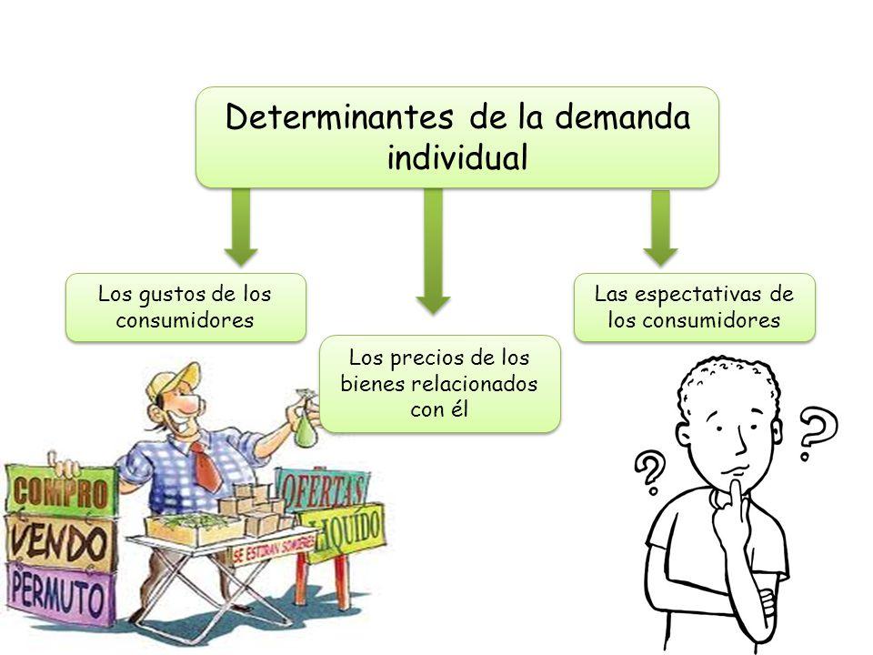 Determinantes de la demanda individual