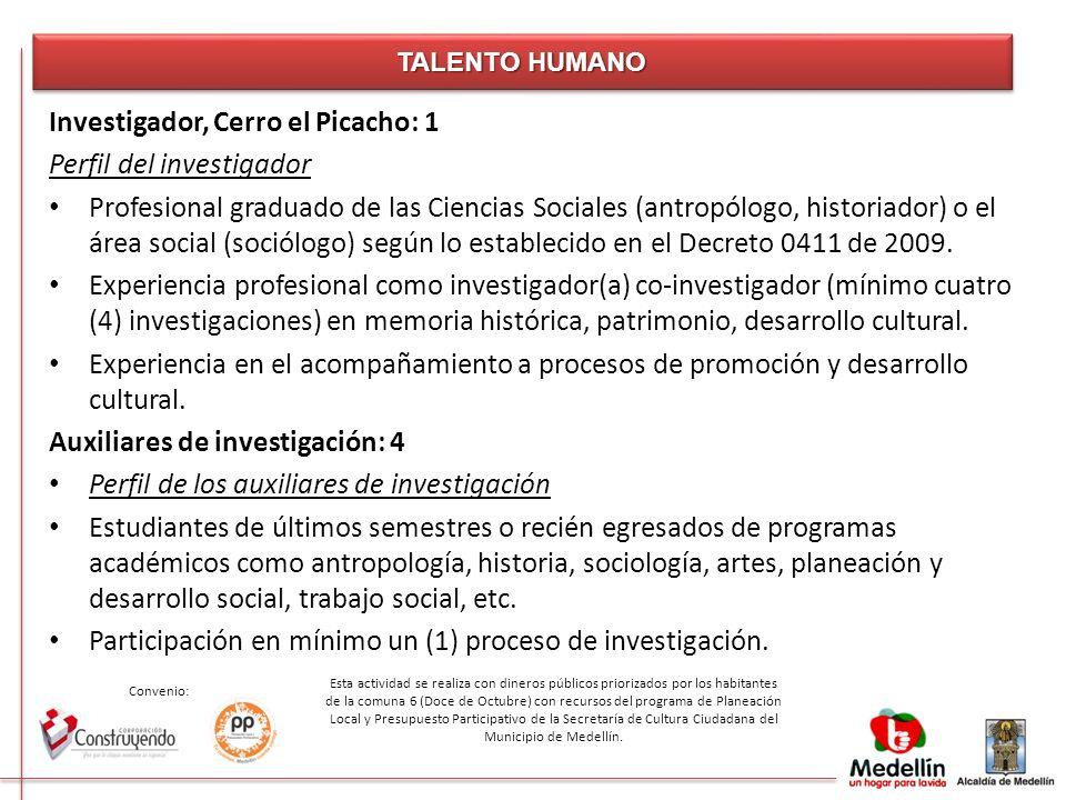 Investigador, Cerro el Picacho: 1 Perfil del investigador