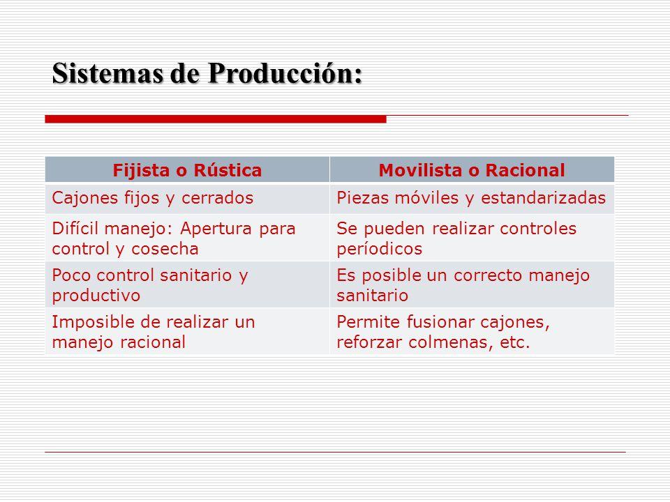 Sistemas de Producción: