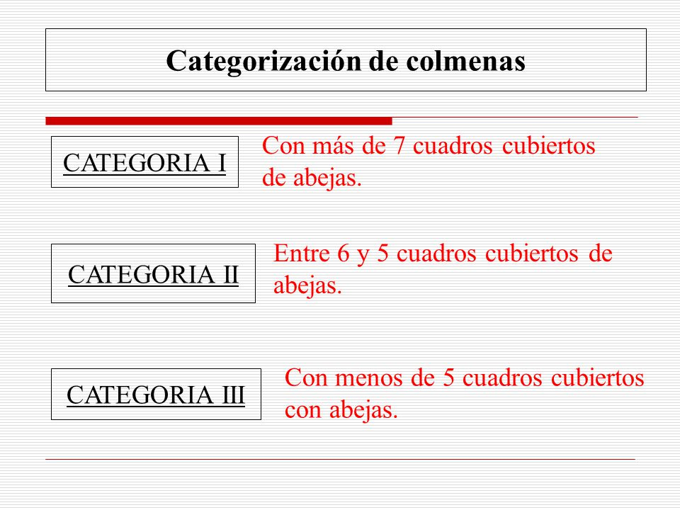 Categorización de colmenas