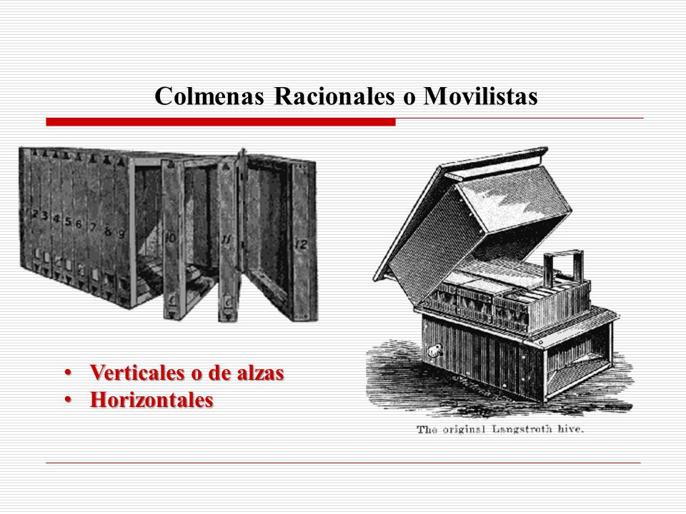 Colmenas Racionales o Movilistas