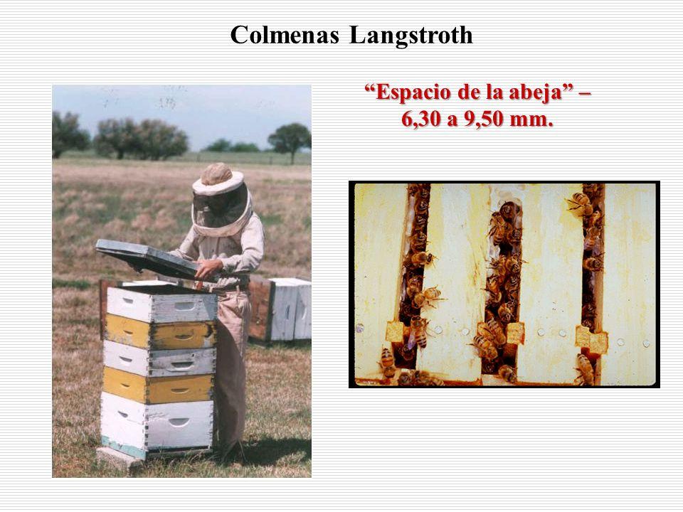 Espacio de la abeja – 6,30 a 9,50 mm.