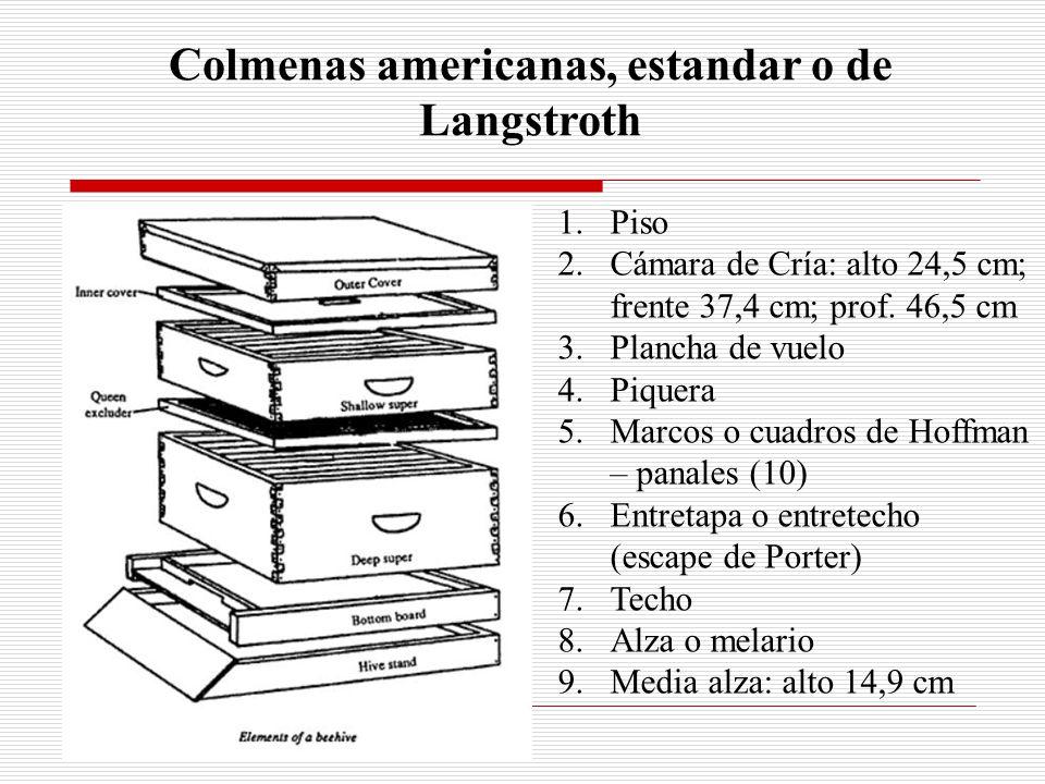 Colmenas americanas, estandar o de Langstroth
