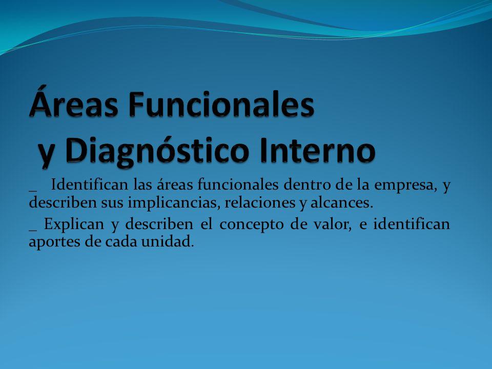 Áreas Funcionales y Diagnóstico Interno