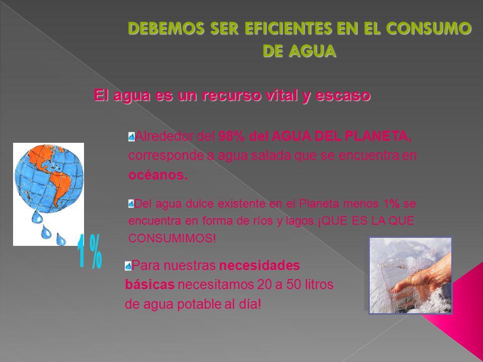 DEBEMOS SER EFICIENTES EN EL CONSUMO DE AGUA