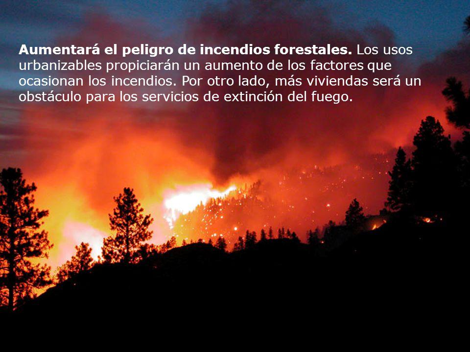 Aumentará el peligro de incendios forestales
