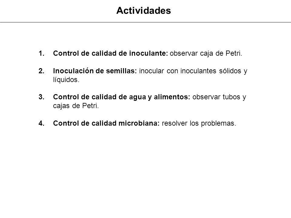 Actividades Control de calidad de inoculante: observar caja de Petri.