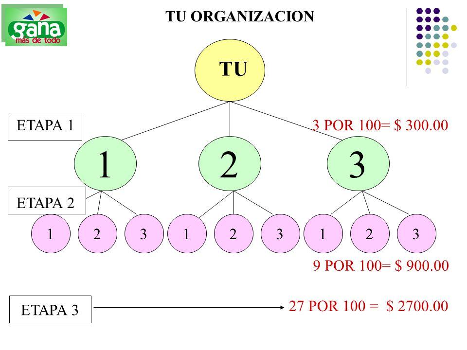 1 2 3 TU TU ORGANIZACION ETAPA 1 3 POR 100= $ 300.00 ETAPA 2 1 2 3 1 2