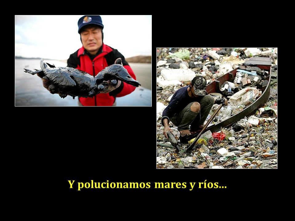 Y polucionamos mares y ríos...