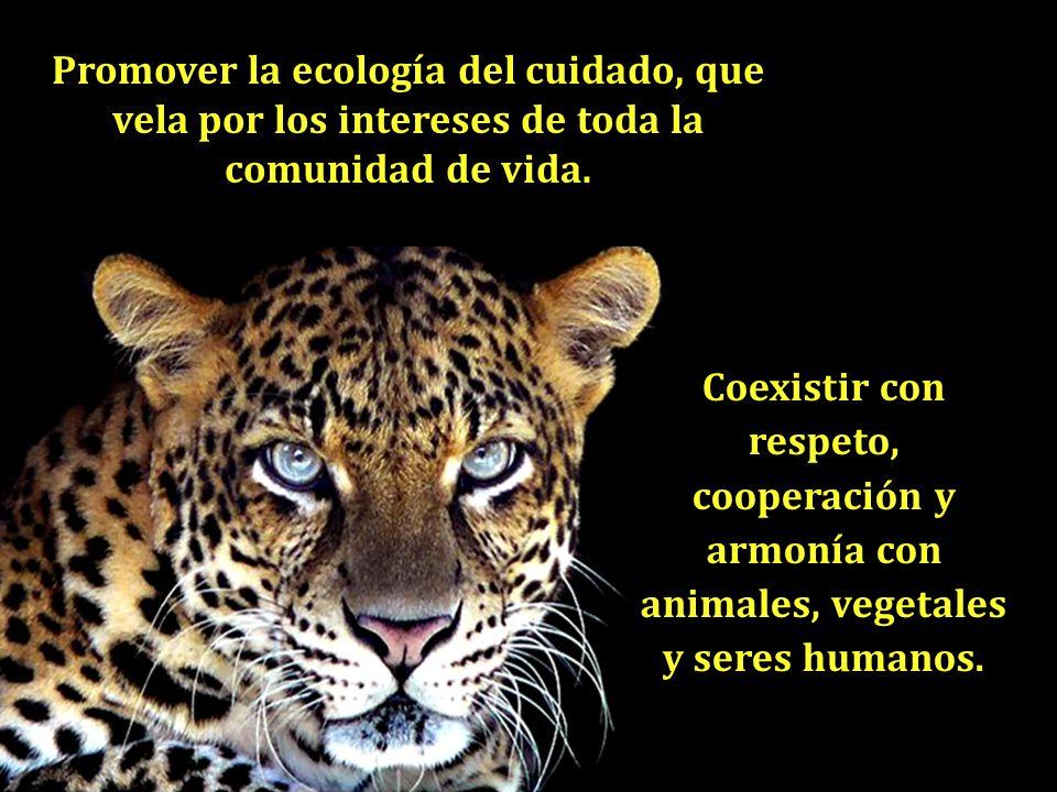 Promover la ecología del cuidado, que vela por los intereses de toda la comunidad de vida.