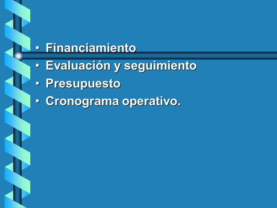 Financiamiento Evaluación y seguimiento Presupuesto Cronograma operativo.