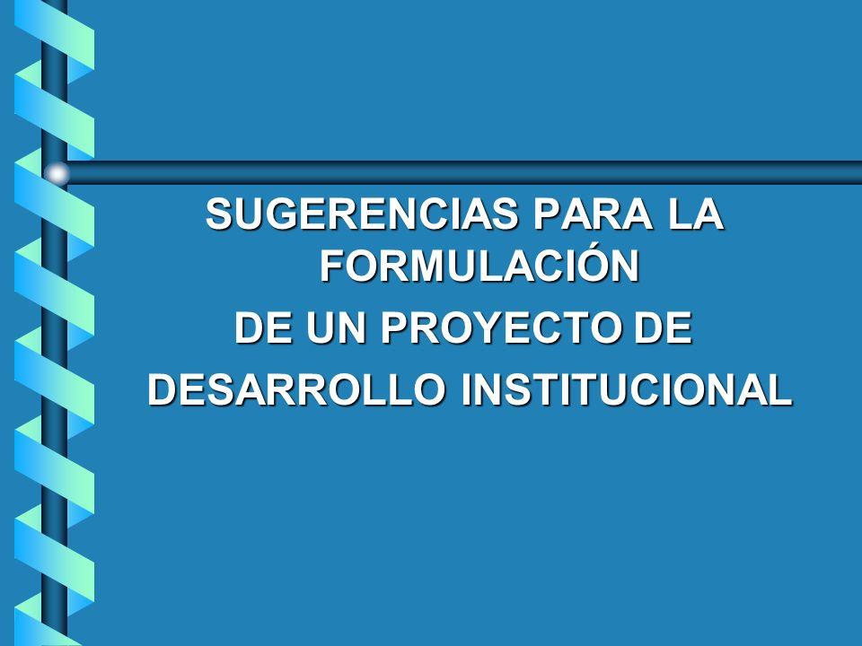 SUGERENCIAS PARA LA FORMULACIÓN DESARROLLO INSTITUCIONAL