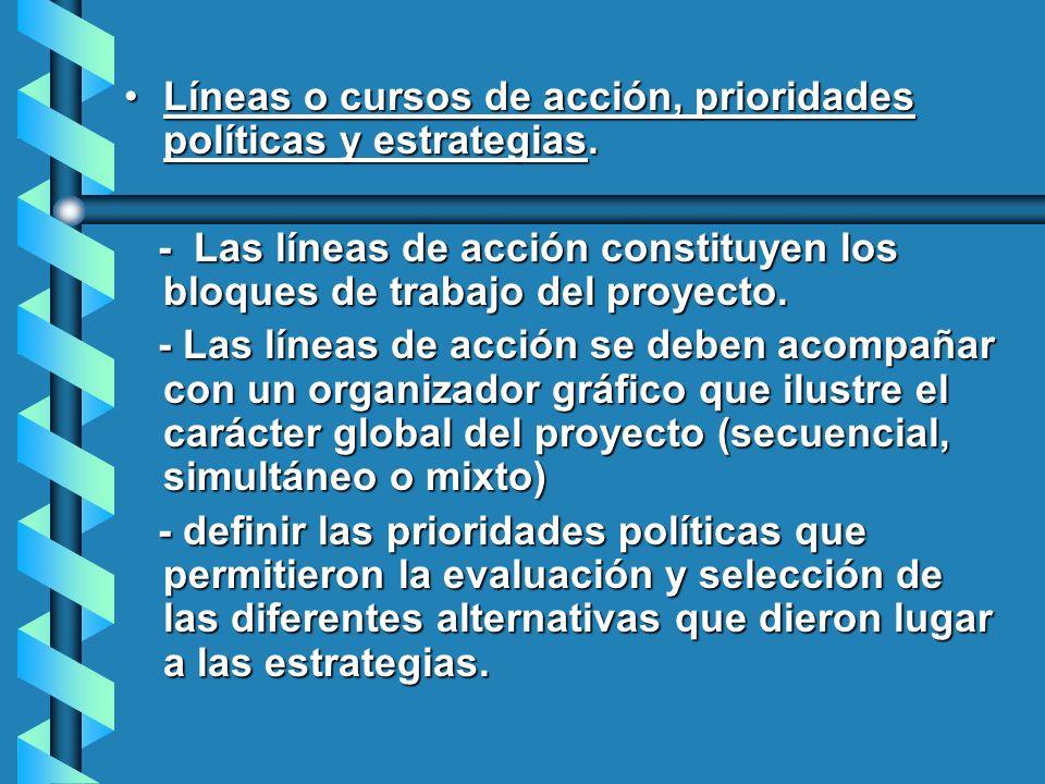 Líneas o cursos de acción, prioridades políticas y estrategias.