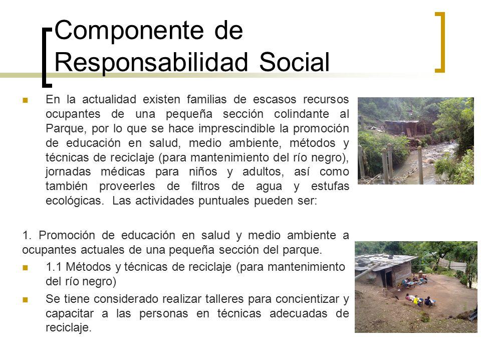 Componente de Responsabilidad Social