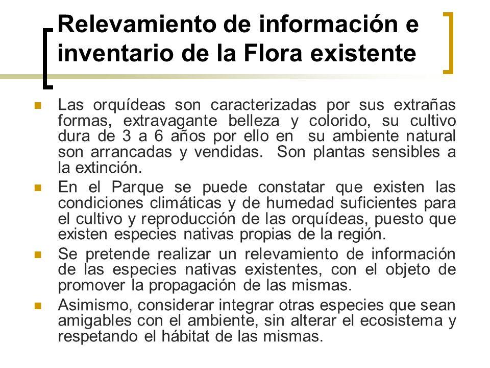 Relevamiento de información e inventario de la Flora existente