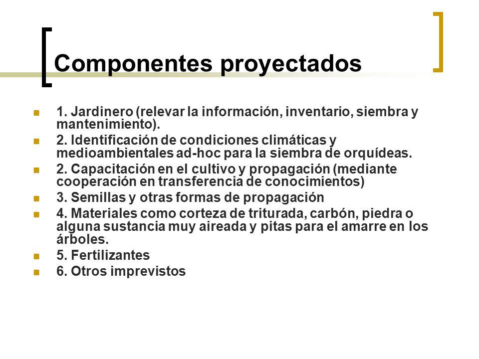 Componentes proyectados