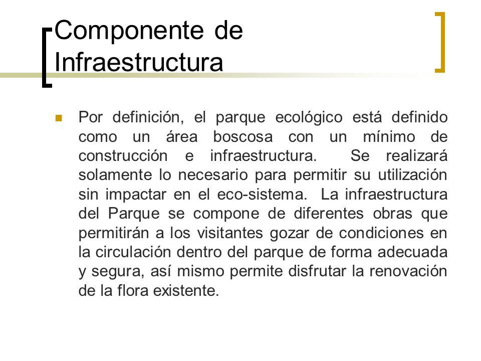 Componente de Infraestructura